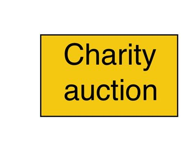 charity-auction.jpg | Pitts